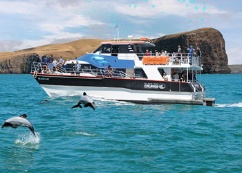 Akaroa Bay Cruise