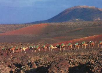 Timanfaya Park (Fire Mountains)