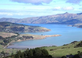 Cruises To Akaroa New Zealand Akaroa Shore Excursions - Cruises to new zealand