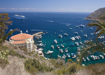 Cruises To Catalina Island California Catalina Island Shore - Catalina cruises