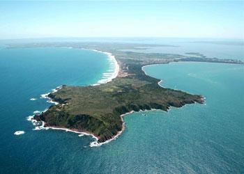 What To Do In Phillip Island Australia